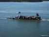 FURZEY SQUIRREL Poole Harbour PDM 14-07-2014 08-09-48