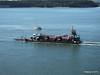 FURZEY SQUIRREL Poole Harbour PDM 14-07-2014 08-09-54