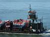 FURZEY SQUIRREL Poole Harbour PDM 14-07-2014 08-09-57