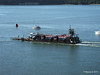FURZEY SQUIRREL Poole Harbour PDM 14-07-2014 08-10-11