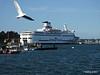BRETAGNE St Malo PDM 11-08-2014 07-58-12