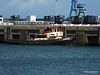 Tug KINGSTON Cherbourg PDM 11-08-2014 14-27-21
