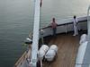 mv FUNCHAL Capt Antonio Morais & Pilot Leixoes PDM 29-04-2014 07-31-58