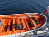 mv FUNCHAL Observation Deck Lifeboats PDM 22-04-2014 14-05-12