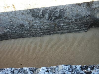 Moat El Morro 01-02-2014 09-22-29