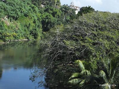 Rio Almendares 01-02-2014 14-33-12