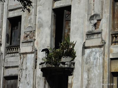 Dwellings along San Martin 01-02-2014 11-19-01