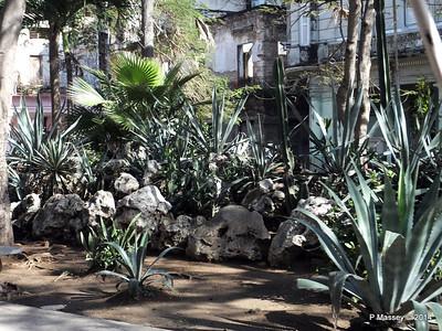 Along Avenida de Belgica Egido Havana 31-01-2014 10-28-54