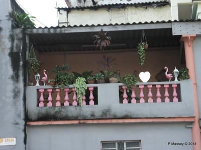 Along Zanja Manrique to Campanaria 31-01-2014 10-42-20