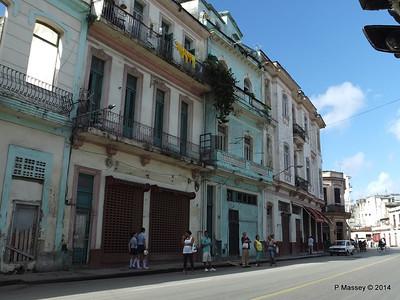 Along Zanja from Rayo 31-01-2014 10-41-22