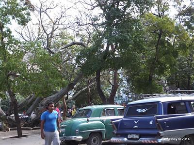 Fe del Valle Park Galiano bet San Miguel y Boulevard de San Rafael 31-01-2014 12-26-12