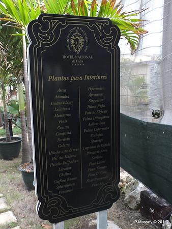 Indoor plants under Cover nacional de Cuba 31-01-2014 20-26-06