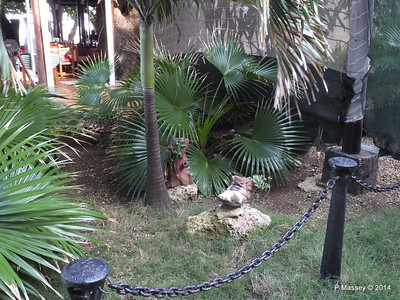La Barraca Creole Restaurant Nacional de Cuba 31-01-2014 20-26-28