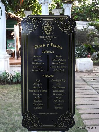 Flora & Fauna Hotel Nacional de Cuba 31-01-2014 20-23-46