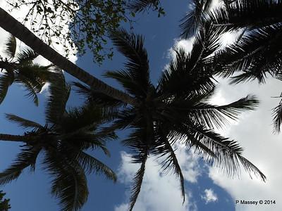 Gardens Hotel Nacional de Cuba 31-01-2014 18-56-12
