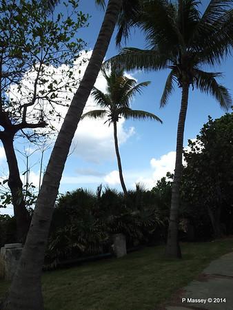 Gardens Hotel Nacional de Cuba 31-01-2014 18-56-04