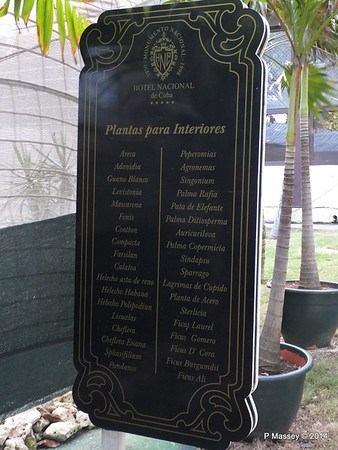 Indoor plants under Cover nacional de Cuba 31-01-2014 20-25-48