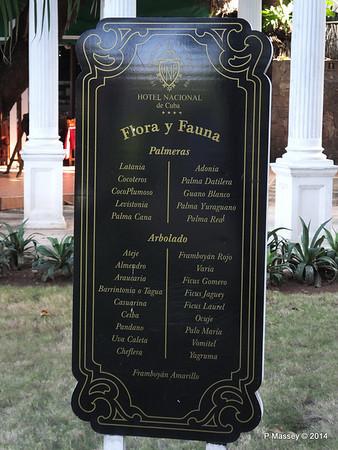 Flora & Fauna Hotel Nacional de Cuba 31-01-2014 20-23-36