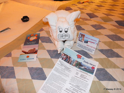 LOUIS CRISTAL Towel Animals 04-02-2014 21-20-36