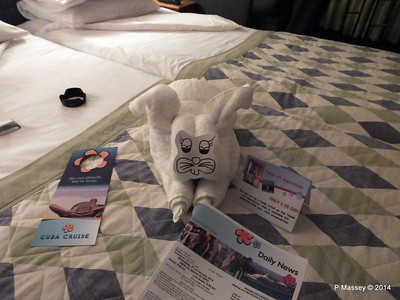 LOUIS CRISTAL Towel Animals 04-02-2014 21-20-26