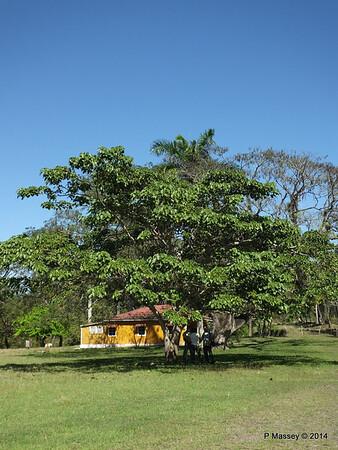 Castro Family home farm Biran 05-02-2014 12-05-46