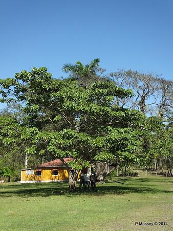 Castro Family home farm Biran 05-02-2014 12-05-42