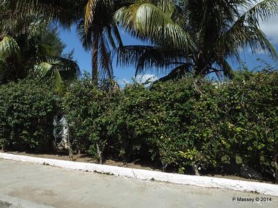 Along Avenida 22 Punta Gorda Cienfuegos 08-02-2014 12-28-38