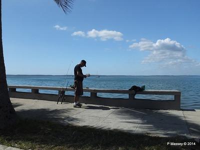 Along Calle 35 Punta Gorda 08-02-2014 12-34-07