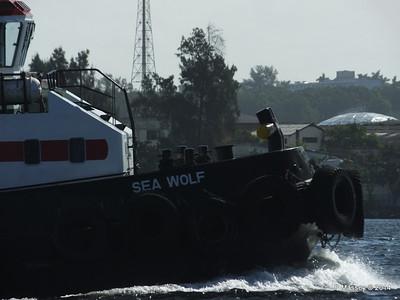 SEA WOLF Havana 02-02-2014 10-14-09