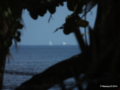 Unknown Vessel through Trees Nacional de Cuba 02-02-2014 11-43-54