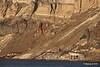 Old Mines Santorini PDM 18-10-2015 15-18-52