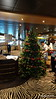 Decorating the Christmas Tree Zebra Bar MSC POESIA 10-12-2015 08-16-27