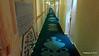 Hallway Petrarca Deck 5 MSC POESIA 10-12-2015 16-25-44