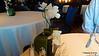 Orchid Le Fontane Ristorante MSC POESIA 28-11-2015 12-43-56
