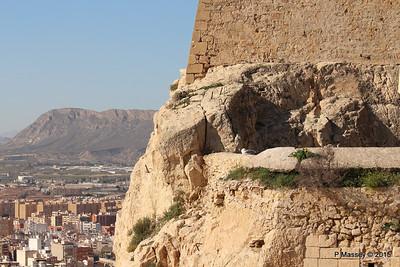 Castillo Santa Barbara Alicante 26-11-2015 12-51-41