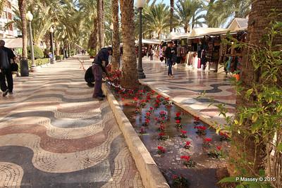 Watering Cyclamen Esplanada d'Espanya Alicante 26-11-2015 11-56-25