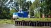 Boatyard Shipyard Graveyard Rio Lujan Parana Delta 13-12-2015 16-11-49