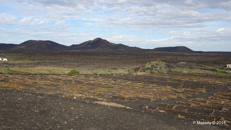 Vines in Craters to catch Rain Dew Approaching La Geria LZ-30 30-11-2015 10-24-026