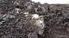 Lava Field Visitor & Interpretation Centre Mancha Blanca Timanfaya PDM 30-11-2015 12-23-49