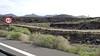 To Parque Nacional Timanfaya LZ-67 Lanzarote PDM 30-11-2015 10-49-26