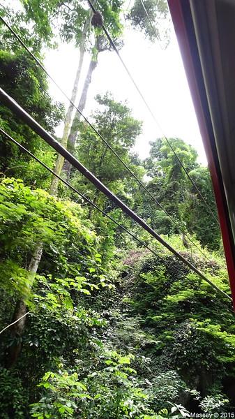 Down Corcovado Rack Railway Rio de Janeiro PDM 09-12-2015 13-24-08
