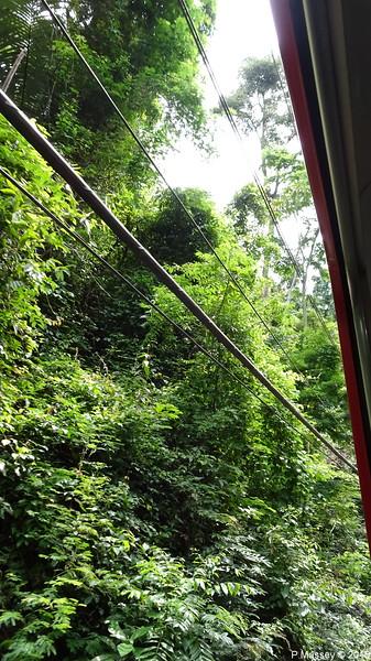 Down Corcovado Rack Railway Rio de Janeiro PDM 09-12-2015 13-24-12