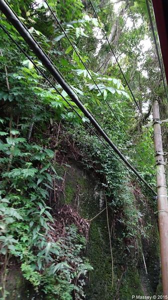 Down Corcovado Rack Railway Rio de Janeiro PDM 09-12-2015 13-23-42