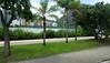 Along Av Epitacio Pessoa Rodrigo de Freitas Lagoon Rio de Janeiro 09-12-2015 13-52-47