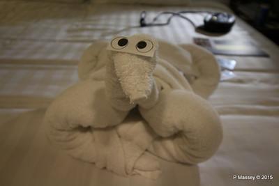 Towel Animals Cabin 10032 NIEUW AMSTERDAM 21-07-2015 19-21-35