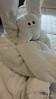 Towel Animal Cabin 10032 NIEUW AMSTERDAM 16-07-2015 18-47-060