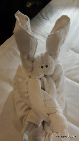 Towel Animal Cabin 10032 NIEUW AMSTERDAM 16-07-2015 18-47-045