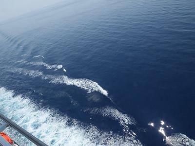 Calm Adriatic Seas from NIEUW AMSTERDAM 25-07-2015 11-12-08