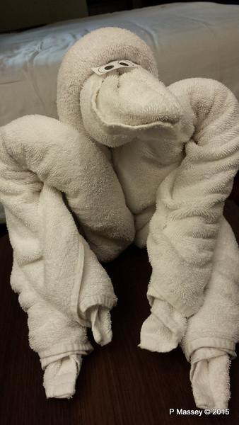 Towel Animal Cabin 10032 NIEUW AMSTERDAM 25-07-2015 19-37-011
