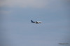Air Transat A310 C-GFAT Inbound VCE 26-07-2015 11-20-00